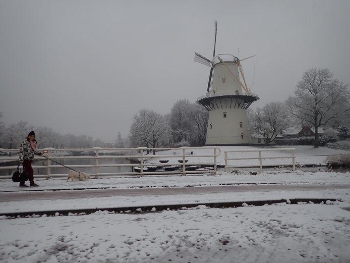 Een archieffoto uit Middelburg, twee jaar geleden.
