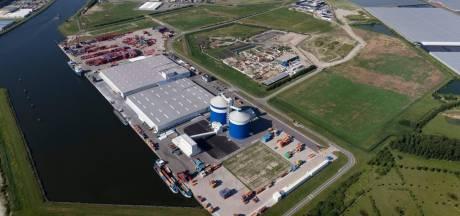 Bedrijfsleven Kanaalzone wil meer windturbines, maar of ze er ook komen?