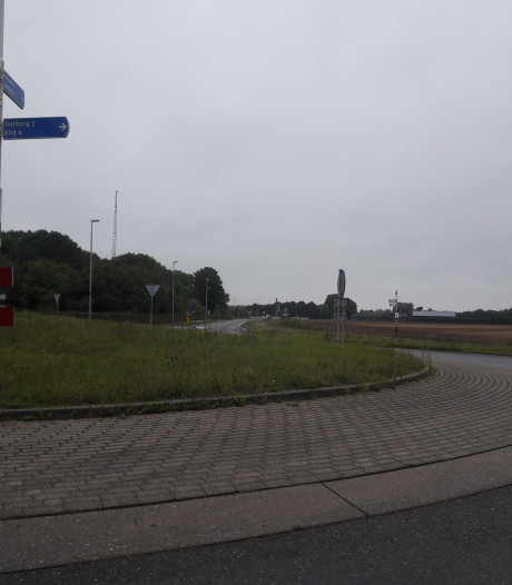 Rotondes in Driel en Valburg volgend jaar fraaier
