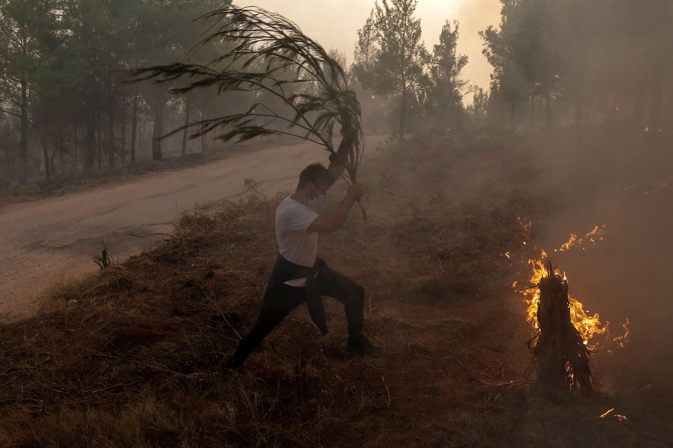 Jongeren gebruiken takken in de strijd tegen het vuur in de regio Tatoi, nabij Athene.