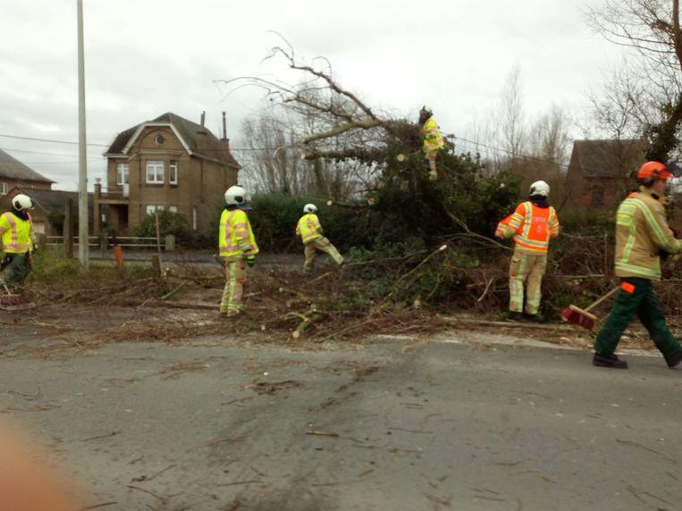 Een omgewaaide boom en enkele hekken zorgden al voor schade.