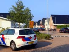 Ex-kopstuk Satudarah opgepakt in Den Bosch bij internationale drugsactie
