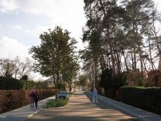 """Verschillende straten in Leuven krijgen nieuwe voetpaden, groenvakken en bomen: """"We gaan zoveel mogelijk verharding wegnemen, zodat er meer regenwater in de bodem kan dringen"""""""