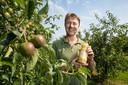 Cees Vink tussen zijn fruitbomen. In een liter van zijn appelsap gaat 1,7 kilogram aan appels.