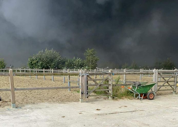 Een zware rookontwikkeling boven de paardenweiden. De dieren zullen nu gecontroleerd worden door een dierenarts op rookintoxicatie.