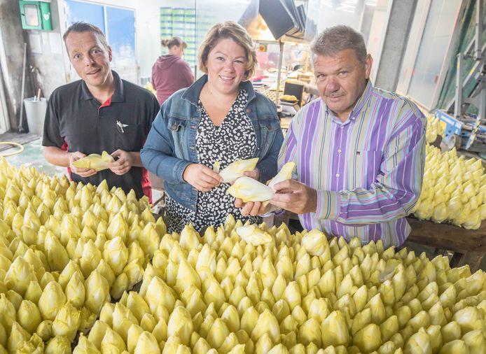 De trojka van witlofverpakker Reijnpack, vlnr: Wiljan Lisseveld, Martine Lisseveld-Reijngoudt en haar vader Rien Reijngoudt.
