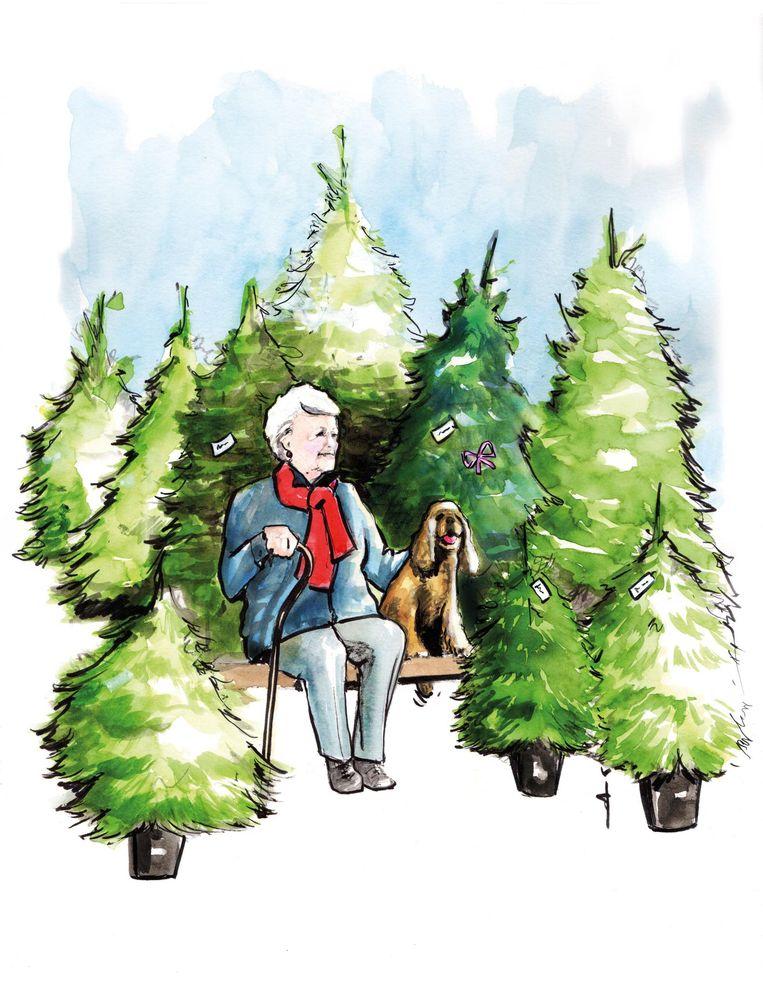 In het tijdelijke kerstbomenbos ontmoet Nancy Wiltink zowel buurtbewoners met hun hond als toevalige passanten. Beeld Sjoukje Bierma