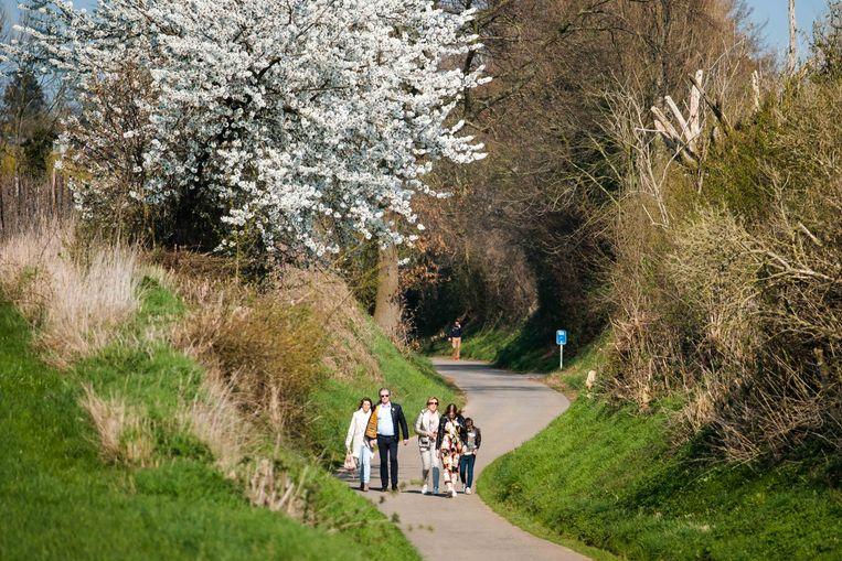 In Haspengouw is met de opening van de Bloesembar in Velm het bloesemseizoen officieel gestart.