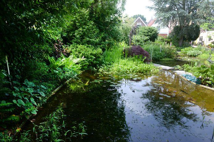 Water vormt de rode draad in de tuin, verborgen in de binnenstad van Roosendaal.