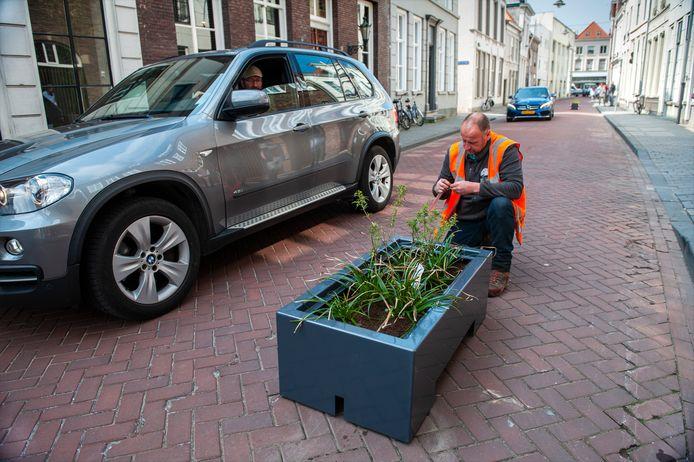 In de Sint-Jorisstraat zijn bloembakken geplaatst om hardrijders aan te pakken. De maatregelen konden niet voorkomen dat een automobilist een handhaver probeerde omver te rijden. De automobilist op de foto heeft niets met dit artikel te maken.