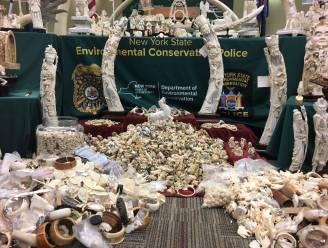 New York vernietigt twee ton ivoor in Central Park