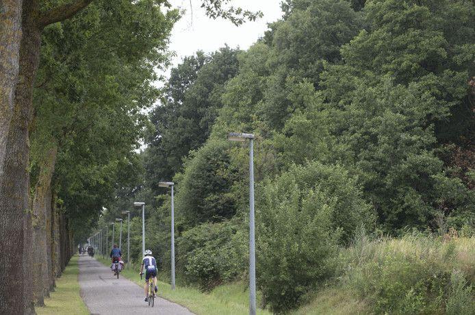 Dassenbos (rechts naast fietspad) waar de nieuwe weg gepland is.