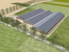 Teleurstelling bij milieuclubs na uitspraak rond varkensbedrijf Logtsebaan Spoordonk