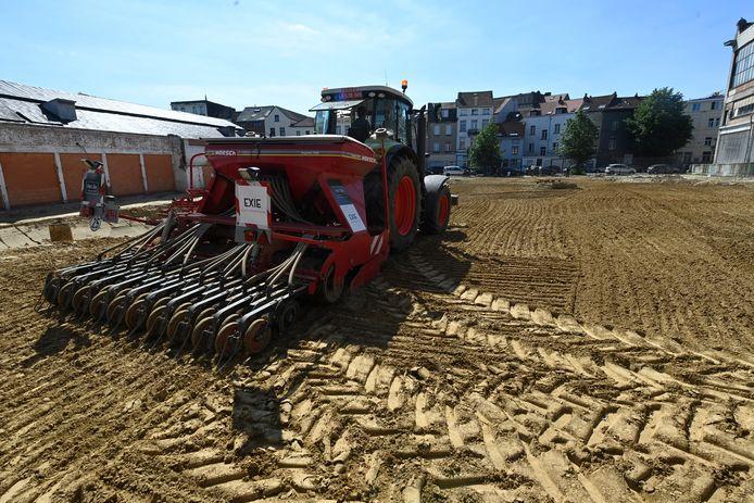 Een tractor in hartje Molenbeek, da's geen alledaags beeld. Eentje die hennep zaait al zeker niet.