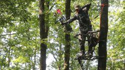 Kijk hoe jager metershoog in boom kruipt met klimstoel