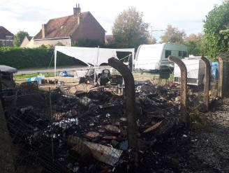 Zware brand op camping in Viane: opberghok met inboedel gaat in vlammen op