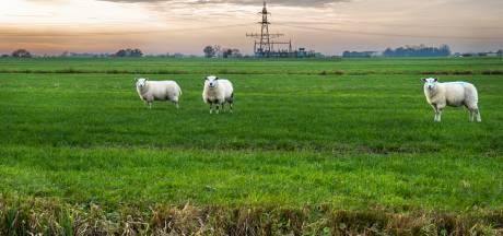 En weer ging het in de Tweede Kamer over bouwen in Utrechtse polder Rijnenburg