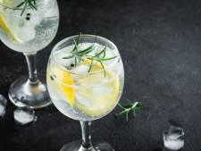 Alcoholvrije gin getest: 'Met een scheut tonic erbij verandert het in een godendrank'