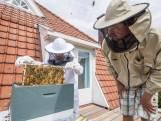 Pieter (10) uit Oldenzaal volgt opleiding tot imker