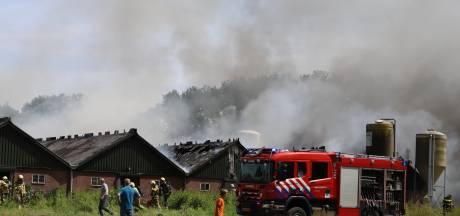 Ruim tweehonderd kalveren omgekomen bij grote brand in Elspeet, drie stallen verwoest