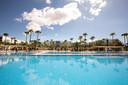 Het Riu Gran Canaria Hotel waar de Nederlanders zullen verblijven.