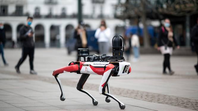 Hyundai neemt fabrikant van robothonden Boston Dynamics over