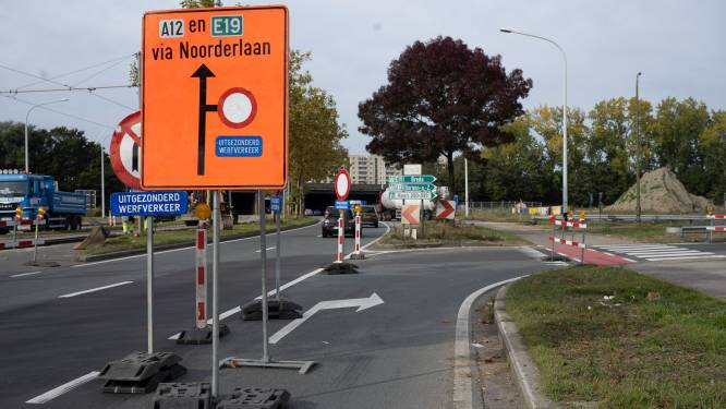 Oosterweel: zes weken lang kapwerken langs Antwerpse ring in Merksem