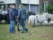 Wat een beweeglijke man met een stok doet op de paardenmarkt in Wijchen