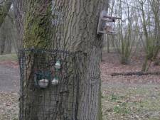 Samen naar het Heempark is óók een optie bij Nationale Tuinvogeltelling