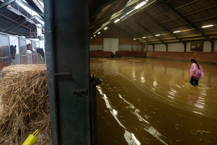 Boeren en manegehouders in Limburg hebben forse schade door het wassende water. Vanuit de Achterhoek komt een helpende hand. Foto: Annemiek Mommers