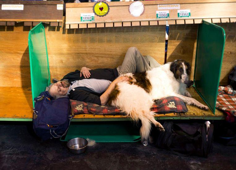 A man sleeps with his dog on the final day of the Crufts Dog Show at the NEC arena in Birmingham, central England. REUTERS/Kieran Doherty (BRITAIN - Tags: ANIMALS SOCIETY) - RTR2Z7LA LOSSE BESTANDEN, NIET (!) BEDOELD VOOR DE LAY-OUT VAN DE PAPIEREN KRANT, ENKEL TE GEBRUIKEN VOOR INTERNET LOSSE BESTANDEN ENKEL BEDOELD VOOR INTERNET, DUS NIET GEBRUIKEN VOOR DE LAYOUT VAN DE PAPIEREN KRANT. Beeld reuters