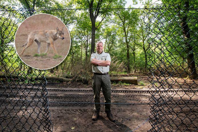 Hoofd bedrijfsvoering Jakob Leidekker toont een gat in het hek dat rondom Het Nationaal Park De Hoge Veluwe staat.