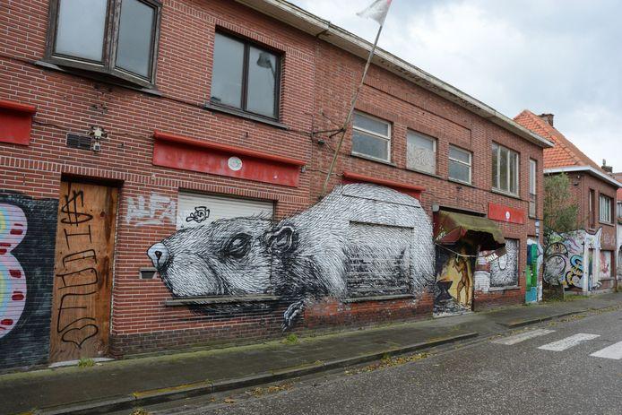 Een werk van ROA, de anonieme Gentse graffiti-artiest. Hij liet op verscheidene plaatsen zijn stempel achter.