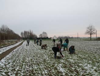 Aanplant Waterhoeve gestart: nieuw bos wordt oase voor Sint-Denijs