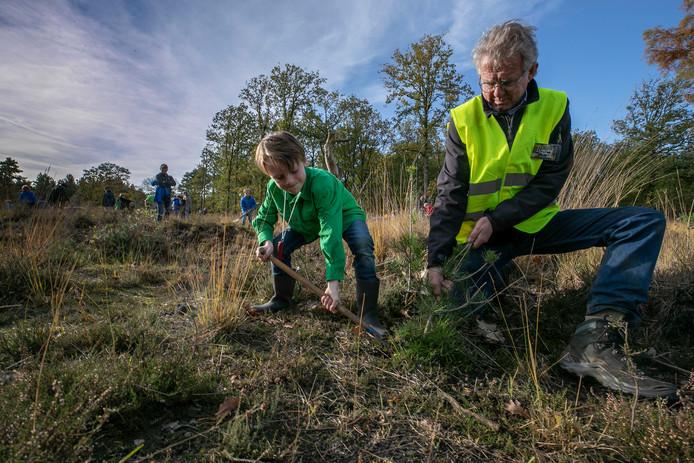Door heel Nederland staken vrijwilligers zaterdag hun handen uit de mouwen tijdens de nationale Natuurwerkdag. In de Stiphoutse Bossen werkten scouts aan verbeterde leefruimte voor kikkers en salamanders.