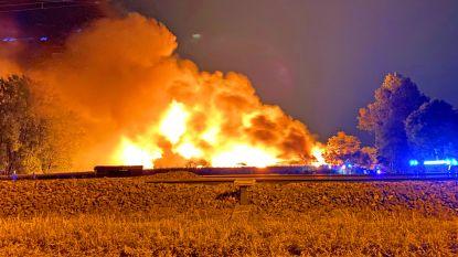 Uitslaande brand verwoest schrijnwerkerij in Opwijk: brandweer massaal ter plaatse
