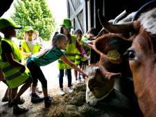 Een boerderij mag best een beetje stinken (en papa ook)