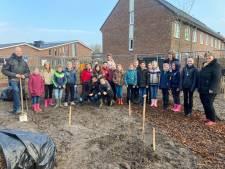 Basisschoolleerlingen planten bomen in Scherpenzeelse woonwijk: dit is waarom