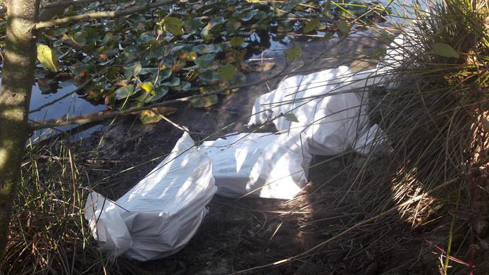 Vorig jaar werden ook al zakken asbest gedumpt aan de rand van een vijver in park Meerland
