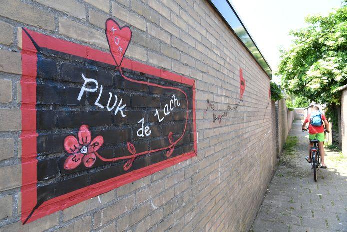 Brandgang tussen Gouverneurslaan en Van der Poelstraat is 'beklad' door buurtbewoonster die de graffiti beu was; vliegertjes met hartjes met leuke tekst.