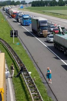 Verkeer in wijde regio krijgt veel last van Haringvlietbrug