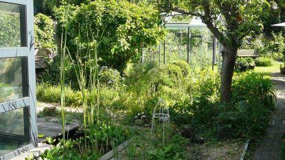Natuurpunt Herent stelt acht 'groene tuinen' open voor grote publiek