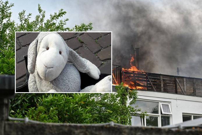 Pumba, de knuffel die de brandweer redde bij een grote, uitslaande brand in Breda.