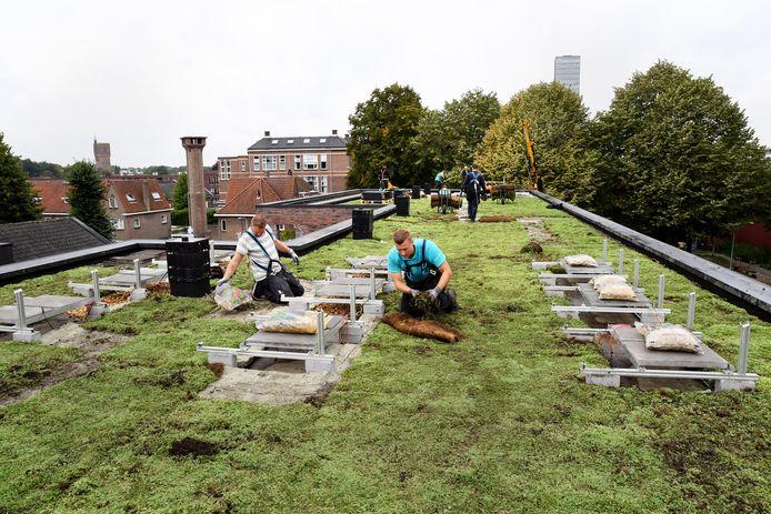 De aanleg van een groen dak op een blok woningen.