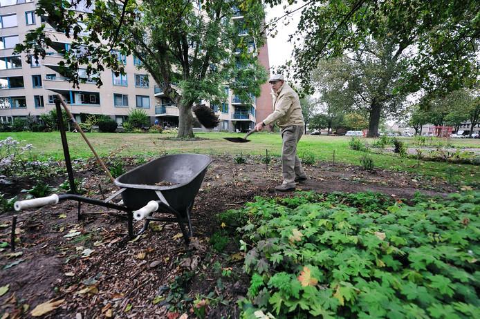Jos Bongers legt in zijn eentje een heel park aan voor zijn flat in Roosendaal.