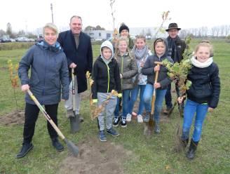 Nieuw bufferbos in Belzele: Heermeerspark officieel geopend op 12 september