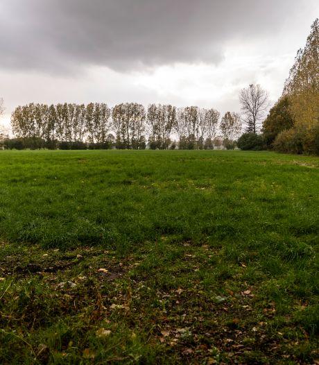 IVN is niet voor of tegen zonnepark Stiphout: 'Het hoeft niet per se slecht te zijn voor de natuur'