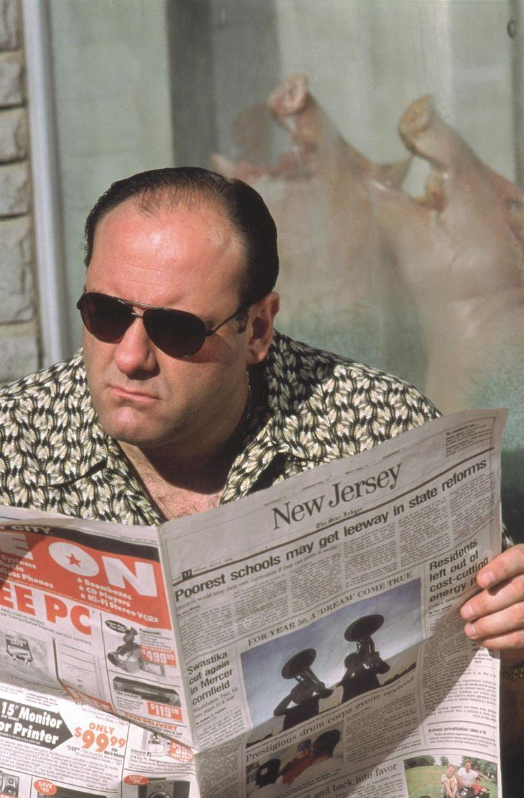 'We hebben rolmodellen nodig. Zoals Tony Soprano. Tough guy in therapy.' Beeld Hollandse Hoogte