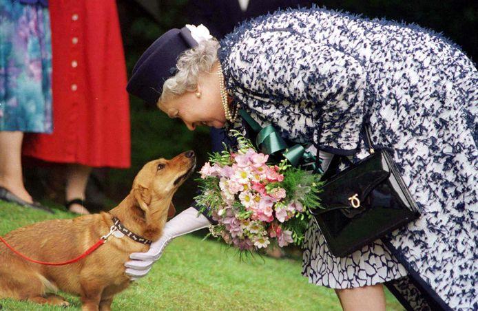 Queen Elizabeth, hier in 2003, is gek op honden.