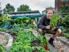 Deze vrijgevige voedseltuin geeft alles weg